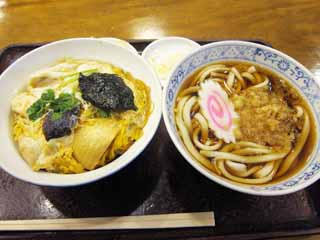����, ������������, ���������, ������, ����������, ���� �����.,Raccoon ������ udon � ���� ���� ������������ � ��������� � ������, ������, ����, ,