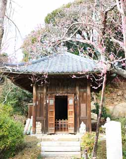 photo, la mati�re, libre, am�nage, d�crivez, photo de la r�serve,Temple Zuisen-ji temple Jizo, Chaitya, Zen Bouddhisme-comme jardin, Kamakura, Litt�rature des cinq temples Zen