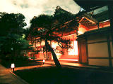 photo,material,free,landscape,picture,stock photo,Creative Commons,Japanese architecture at night, , , ,