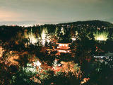 photo,material,free,landscape,picture,stock photo,Creative Commons,Full view of night Ginkakuji, , , ,