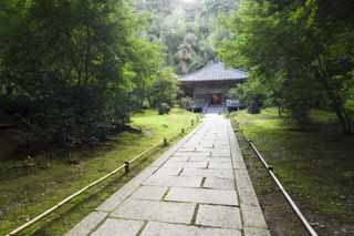 photo, la mati�re, libre, am�nage, d�crivez, photo de la r�serve,La Maison de connaissance encyclop�dique de Matsushima, Temple bouddhiste et temple du Shinto�sme, Le couloir principal de temple bouddhiste, chemin, chauss�e de pierre