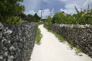 photo, la mati�re, libre, am�nage, d�crivez, photo de la r�serve,Un chemin de mur Ishigaki, Entasser-pierres, barre du sable, pays du sud, Okinawa