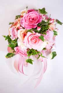 photo, la mati�re, libre, am�nage, d�crivez, photo de la r�serve,Un bouquet, Bouquet, rose, rose, rose