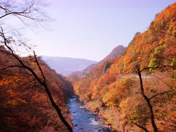 ����, ������������, ���������, ������, ����������, ���� �����.,Agatsuma valley in autumn., ������� ������, , ,