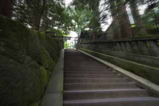 photo, la mati�re, libre, am�nage, d�crivez, photo de la r�serve,Un escalier de pierre de Tosho-gu Temple, escalier de pierre, Escalier, torii, c�dre