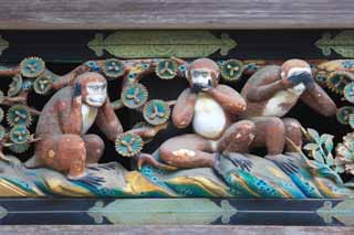 photo,material,free,landscape,picture,stock photo,Creative Commons,The three monkeys of Tosho-gu Shrine, The three monkeys, I don't look, I don't say, I don't hear it