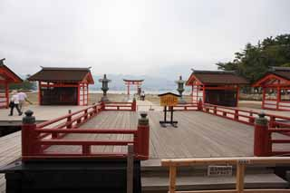 photo, la mati�re, libre, am�nage, d�crivez, photo de la r�serve,La haute �tape de Temple Itsukushima-jinja, L'h�ritage culturel de Monde, temple principal, Temple shinto�ste, Je suis rouge du cinabre