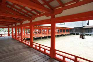 photo, la mati�re, libre, am�nage, d�crivez, photo de la r�serve,Un couloir de Temple Itsukushima-jinja, L'h�ritage culturel de Monde, Otorii, Temple shinto�ste, Je suis rouge du cinabre