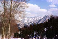 photo, la mati�re, libre, am�nage, d�crivez, photo de la r�serve,Montagnes neigeuses l'apr�s-midi, neige, montagne, arbre,