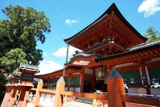 photo,material,free,landscape,picture,stock photo,Creative Commons,Kasuga Taisha Shrine, Shinto, Shinto shrine, I am painted in red, roof