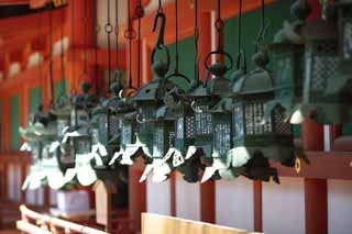 photo,material,free,landscape,picture,stock photo,Creative Commons,The garden lantern of Kasuga Taisha Shrine, Shinto, Shinto shrine, I am painted in red, garden lantern