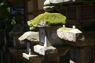 photo,material,free,landscape,picture,stock photo,Creative Commons,The row of stone lantern baskets, Illumination, stone lantern basket, The shade, Moss