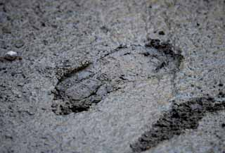 photo,material,free,landscape,picture,stock photo,Creative Commons,Establish it; regrets of the concrete, footprint, The construction spot, I step, plasterer