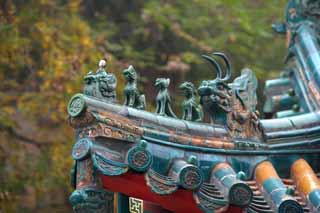 photo,material,free,landscape,picture,stock photo,Creative Commons,Summer Palace travel-animals, Roof, Tile, Xuanzang, Buddhism
