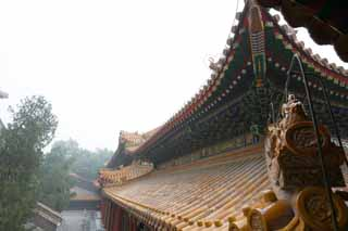 photo,material,free,landscape,picture,stock photo,Creative Commons,Summer Palace cloud of exhaust buttocks, Roof, Tile, Architecture, World Heritage
