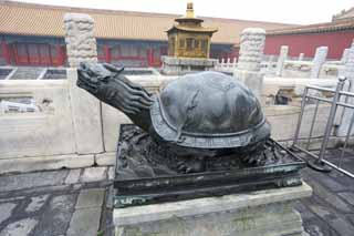 photo,material,free,landscape,picture,stock photo,Creative Commons,Ding turtle Forbidden City, Tortoise, Turtle, Decoration, World Heritage