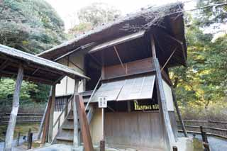 photo, la mati�re, libre, am�nage, d�crivez, photo de la r�serve,Kodaiji Temple pavillon drizzling, , C�r�monie du th�, Japonais fait une culture, C�r�monie du th�