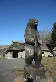 photo, la mati�re, libre, am�nage, d�crivez, photo de la r�serve,Le bois qui sculpte de l'ours, ours, ours, ours, Ainu
