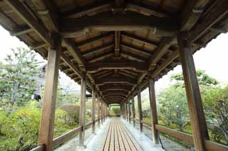 photo,material,free,landscape,picture,stock photo,Creative Commons,Tenryu-ji roofed passage connecting buildings, Chaitya, room with a wooden floor, world heritage, Sagano