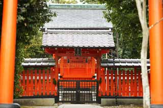 ����, ������������, ���������, ������, ����������, ���� �����.,Tenryu-ji Shrine, Shinto shrine, � ����������� � �������, ������� ����������, Sagano