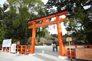 ����, ������������, ���������, ������, ����������, ���� �����.,��� Kamigamo Shrine toriis, torii, Shinto ������ festoon, �������������� ������ ���, ���������