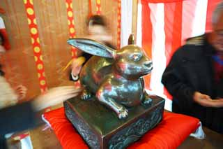 photo, la mati�re, libre, am�nage, d�crivez, photo de la r�serve,Caressez le temple shinto�ste trois-� roues; un lapin, Shinto�sme, Caressez-le; un lapin, Circonscriptions administratives, Dieu lapin