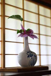 photo,material,free,landscape,picture,stock photo,Creative Commons,A shoji window, shoji window, shelf, clematis, Japanese architectural style architecture