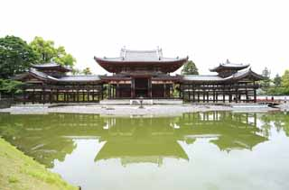 photo,material,free,landscape,picture,stock photo,Creative Commons,Byodo-in Temple Chinese phoenix temple, world heritage, Jodo faith, Pessimism due to the belief in the third and last stage of Buddhism, An Amitabha sedentary image