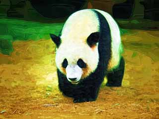 illustration,material,free,landscape,picture,painting,color pencil,crayon,drawing,Giant panda, panda, , I am pretty, walk
