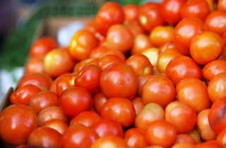 photo, la mati�re, libre, am�nage, d�crivez, photo de la r�serve,Une tomate, magasin du l�gume, tomate, Rouge, L�gumes