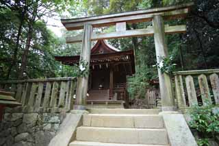 photo, la mati�re, libre, am�nage, d�crivez, photo de la r�serve,Ishigami se sp�cialisent temple Tateo Izumo Temple, La chronique japonaise de Japon, description d'histoire folklorique, b�timent en bois, Shinto�sme