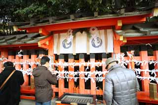 photo, la mati�re, libre, am�nage, d�crivez, photo de la r�serve,Fushimi-Inari Taisha Temple terrain sacr�, Richesse-r�v�lateur, Il grandit, terrain sacr�, renard