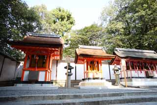 photo, la mati�re, libre, am�nage, d�crivez, photo de la r�serve,Fushimi-Inari Taisha Temple farceur professionnel, Shinto�sme, Corporation du chiffre centrale, Inari, renard