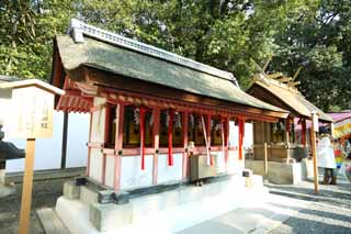 photo, la mati�re, libre, am�nage, d�crivez, photo de la r�serve,Fushimi-Inari Taisha compagnie du champ de la charge du Temple, La visite de nouvelle ann�e � un temple shinto�ste, Je suis peint en rouge, Inari, renard