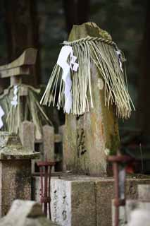 ����, ������������, ���������, ������, ����������, ���� �����.,Fushimi-����� Taisha Shrine gravestone, Shinto ������ festoon, �������� ����������, �����, ����