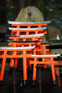 ����, ������������, ���������, ������, ����������, ���� �����.,Fushimi-����� Taisha Shrine torii, ����� ��������� ���� � Shinto shrine, torii, �����, ����