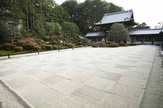 photo,material,free,landscape,picture,stock photo,Creative Commons,Tofuku-ji Temple founder's shrine garden, Chaitya, Japanese garden, rock, dry landscape Japanese garden garden