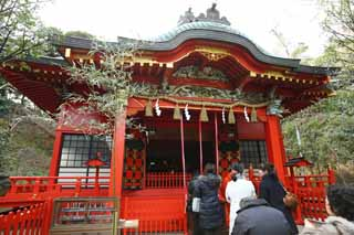photo, la mati�re, libre, am�nage, d�crivez, photo de la r�serve,Temple Eshima temple Nakatsu, , Temple shinto�ste, , Ozunu Enno