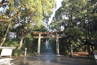 photo, la mati�re, libre, am�nage, d�crivez, photo de la r�serve,Torii de Temple Meiji, L'empereur, Temple shinto�ste, torii, Une approche � un temple
