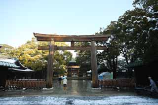 photo, la mati�re, libre, am�nage, d�crivez, photo de la r�serve,Torii de Temple Meiji, L'empereur, Temple shinto�ste, torii, Neige