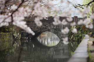 photo, la mati�re, libre, am�nage, d�crivez, photo de la r�serve,Kurashiki Imahashi, Culture traditionnelle, pont de pierre, arbre de la cerise, L'histoire