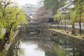 photo, la mati�re, libre, am�nage, d�crivez, photo de la r�serve,Kurashiki Imahashi, Culture traditionnelle, pont de pierre, saule, L'histoire