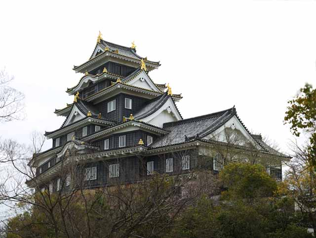 photo,material,free,landscape,picture,stock photo,Creative Commons,Okayama-jo Castle, castle, The castle tower, Crow Castle, Crow Castle